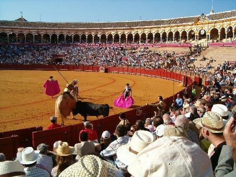 Plaza de Toros - Plaza de Toros