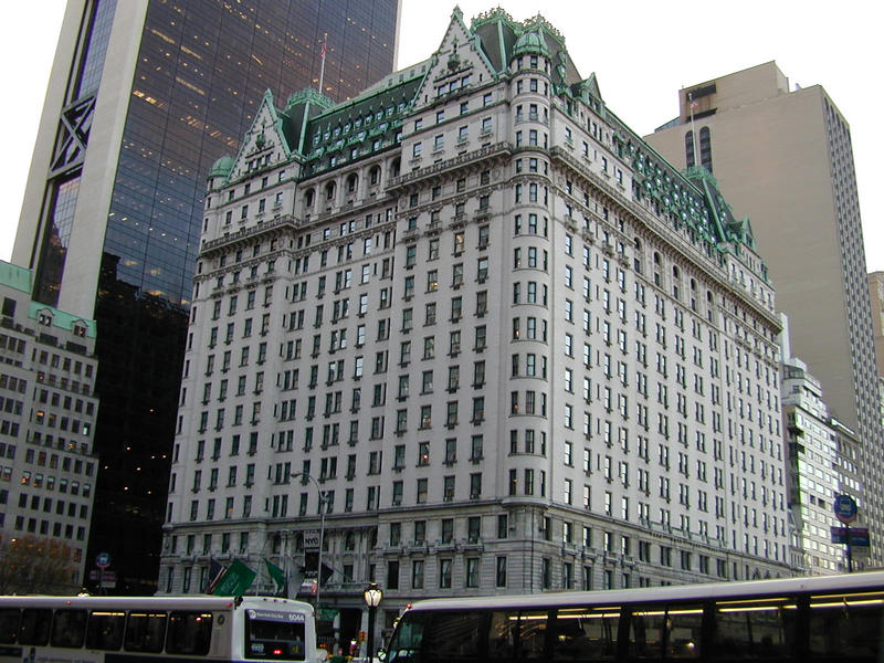 The plaza hotel new york the best 5 star hotels in new for Top hotels in nyc