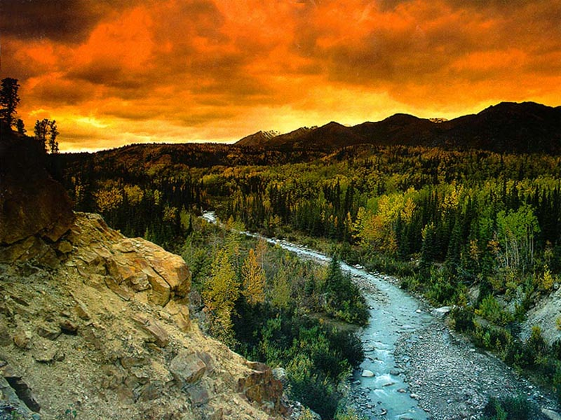 national park big and beautiful singles Adult & singles vacations astronomy scenic rafting trip just outside of yosemite national park and big, beautiful beaches equals the perfect blend of thrills.