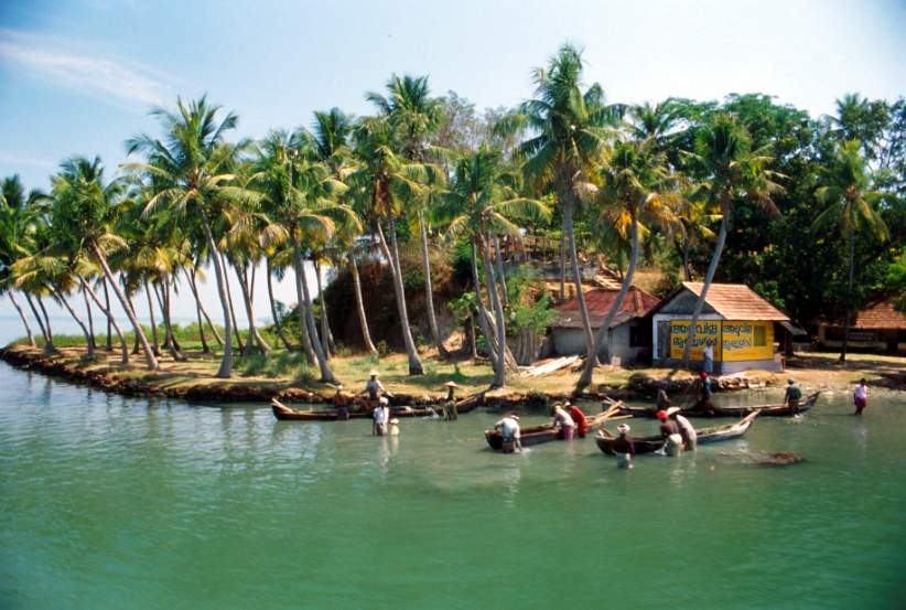 Kerala Backwaters - Beautiful landscape