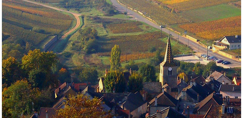 Vineyard areas in France - Picturesque setting