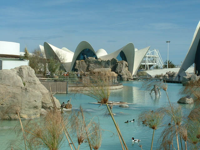 The Aquarium in Valencia, Spain - Great design