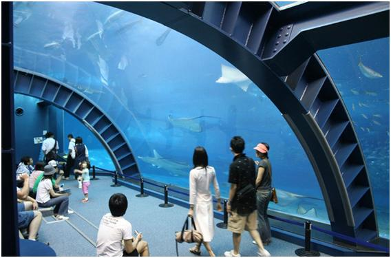 The Okinawa Churaumi Aquarium, Japan - Churaumi Aquarium
