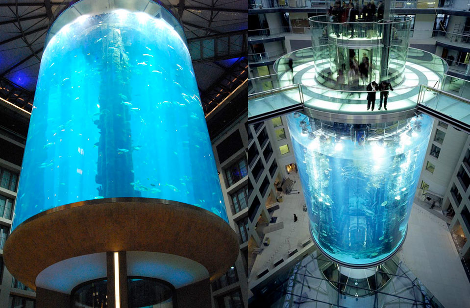 The AquaDom in Berlin, Germany - The largest acrylic cylinder in the world