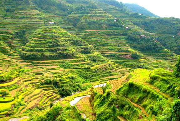 Banaue Rice Terraces In Philippines Top Wonders Of The World You Did Not Know About