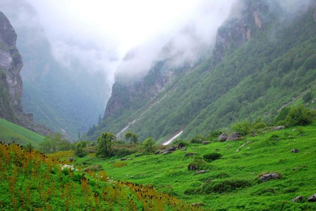 Valley of Flowers in the Himalayas, India - Beautiful landscape