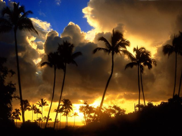 Hawaii - Beautiful sunset