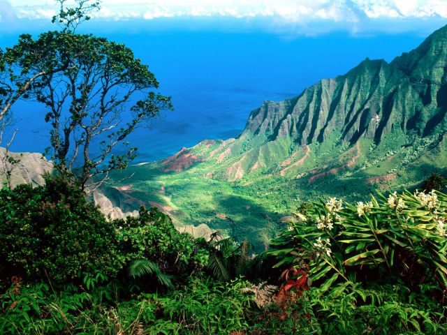 Hawaii - Hawaii beauty