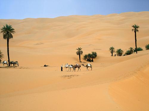 ubari oasis libya Photo