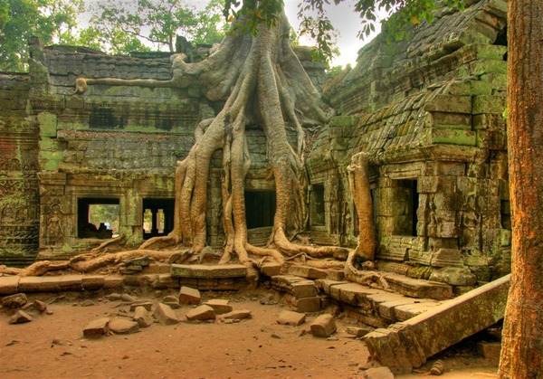 Angkor Wat in Cambodia - Ta Prom Temple