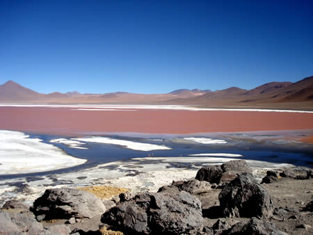 Red Lagoon in Bolivia  - Amazing view