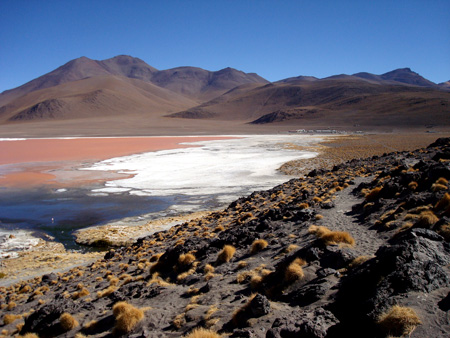Red Lagoon in Bolivia  - Beautiful view