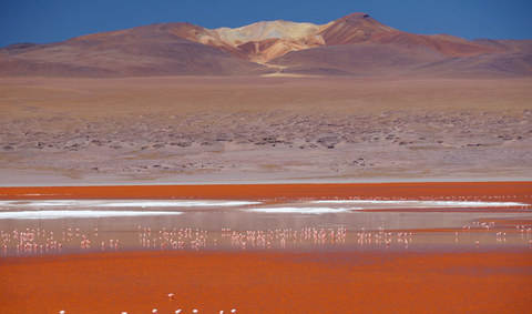 Red Lagoon in Bolivia  - Panoramic views