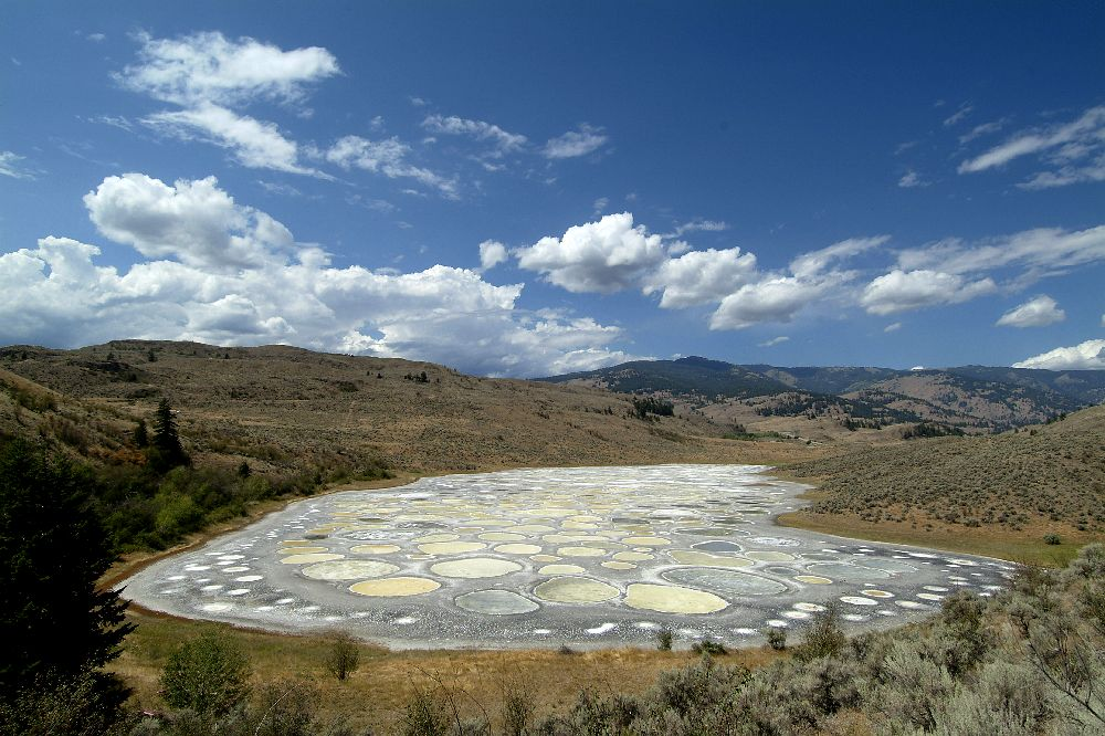 Spotted Lake in Canada - General view