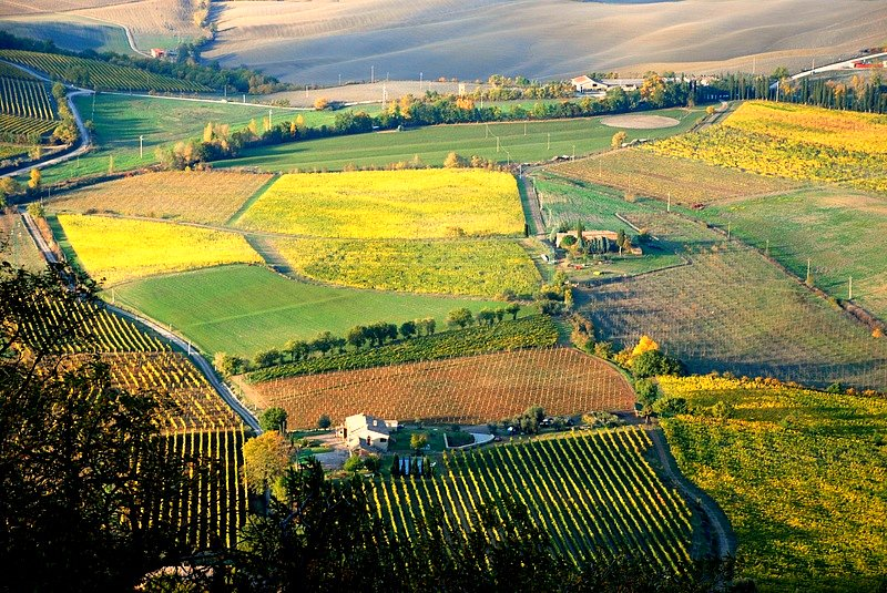 Montalcino Wine Tour - Aerial view