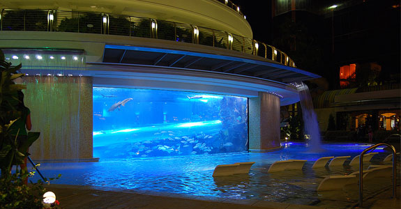 Golden Nugget The Best Swimming Pools In The World