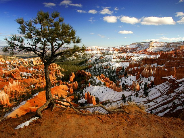 Bryce Canyon National Park in Utah - Winter time