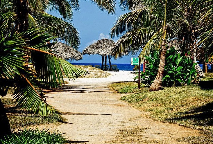 Varadero beach - Lush vegetation