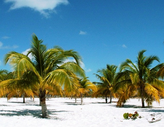 Cayo Largo - Exotic location