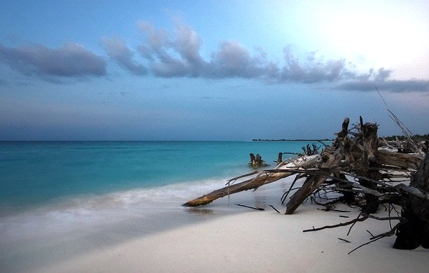Cayo Largo - Splendid beach