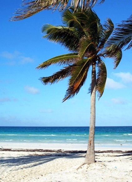 Cayo Coco and Cayo Guillermo - Outmost comfort and relaxation