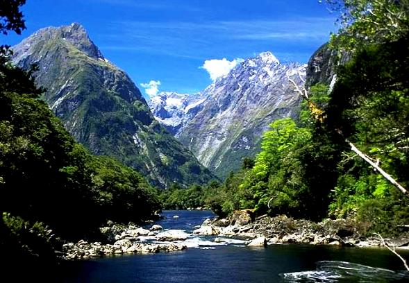 The best cruise in Australia and New Zealand - Fabulous nature in New Zealand