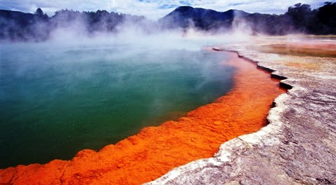 The best cruise in Australia and New Zealand - Geysers in New Zealand