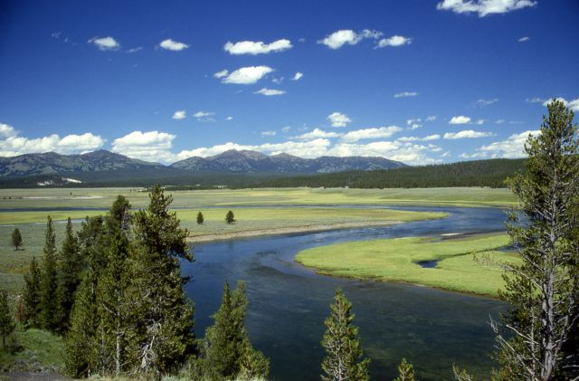 The Yellowstone National Park in Wyoming, USA  - Yellowstone view