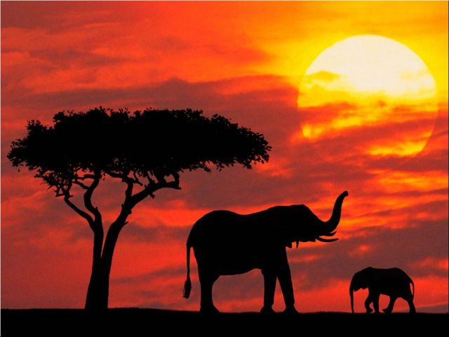 Kenya - Beautiful sunset