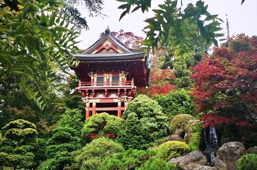 Golden Gate Park The Most Wonderful Places To Visit In San Francisco