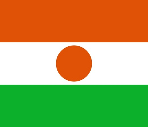Niger Flag Flag Of Niger | LONG HAIRSTYLES