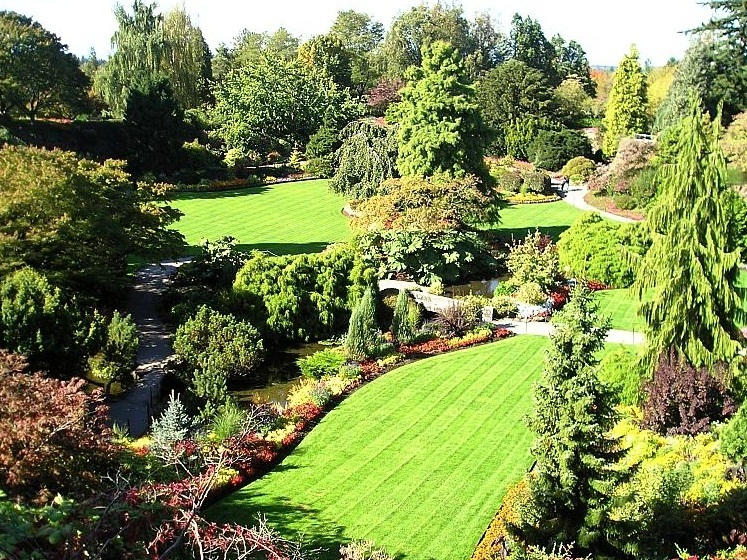 Queen Elizabeth Park - Park view