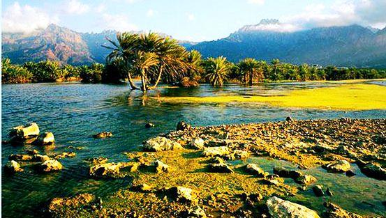 Socotra Islands archipelago - Exclusive site