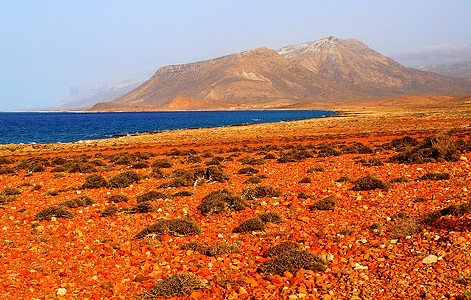 Socotra Islands archipelago - Tropical desert