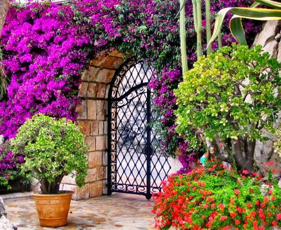 The Exotic Garden Incredible Venue