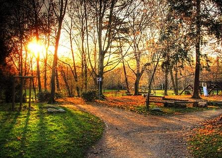 Images Grneburgpark Autumn view 10358