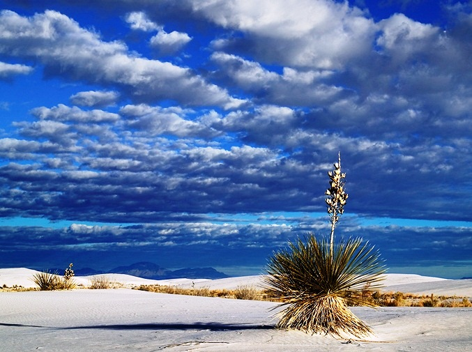 White Sands National Monument - Amazing place