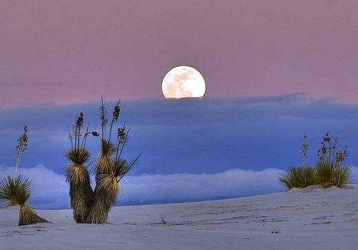 White Sands National Monument - Night view