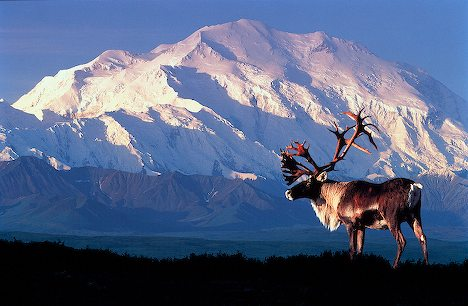 Alaska in USA - Mount McKinley
