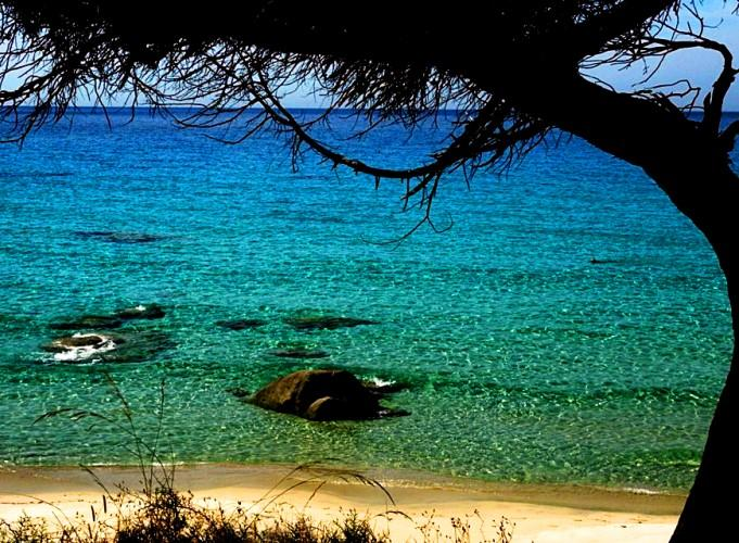 Cagliari in Sardinia, Italy - Fabulous beach in Sardinia