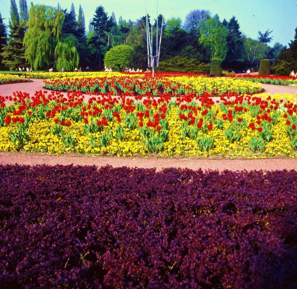 The North Park - Flower beds