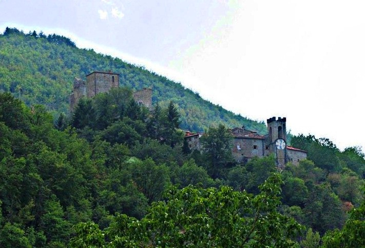 Castel San Niccolo - Overview