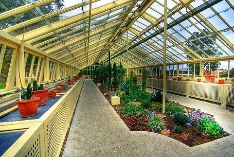 National Botanic Gardens   Glasshouse