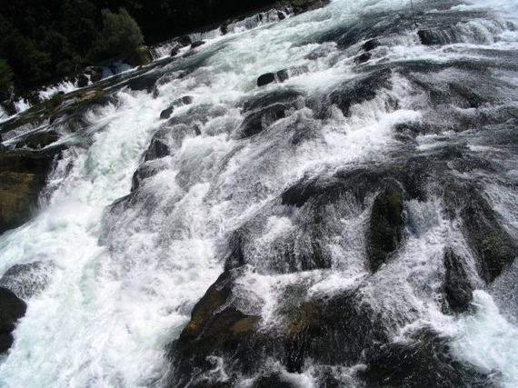 Rhine Falls - Restless water