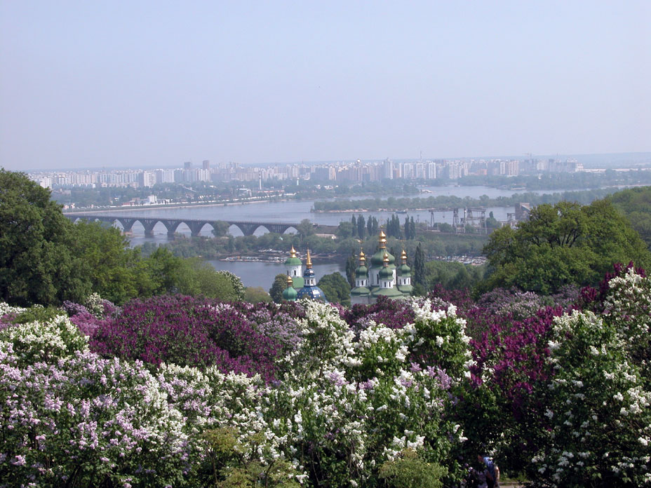 Kiev - Blooming city