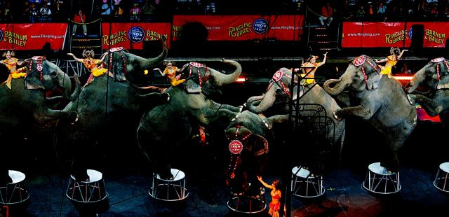 Heavenly show from China  – the most amazing circus - Fabulously number