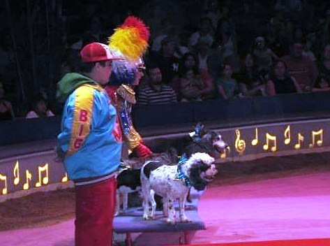 Big Apple Circus – the most generous in the world - Enchanting atmosphere