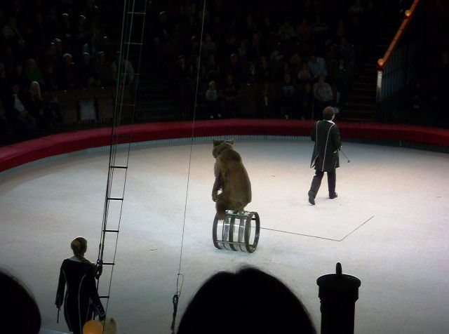 The Great Moscow Circus- the best attraction in the world - A bear