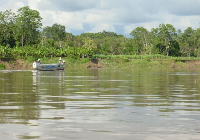 The Amazon River - The Amazon basin
