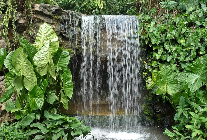 Singapore Botanical Gardens - Fantastic waterfall